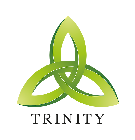 Image result for trinity images